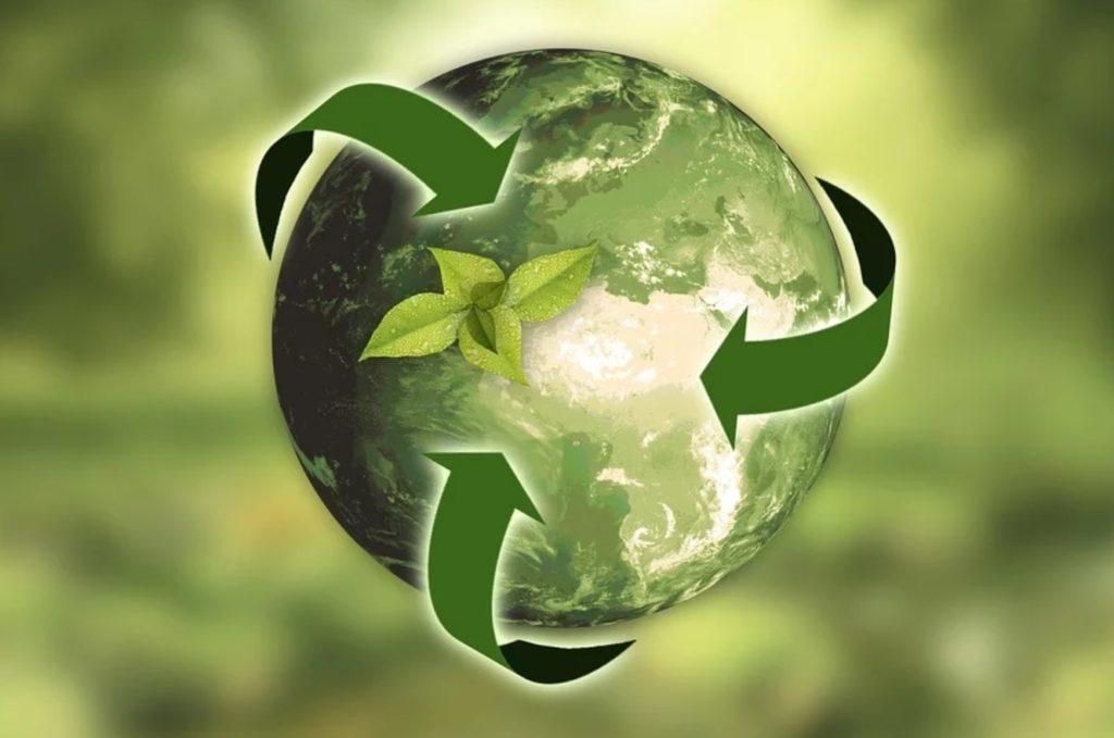 Flexitarismus & Nachhaltigkeit: Warum es sich für dich lohnt, Flexitarier zu werden