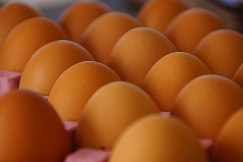 Eierkonsum in Deutschland