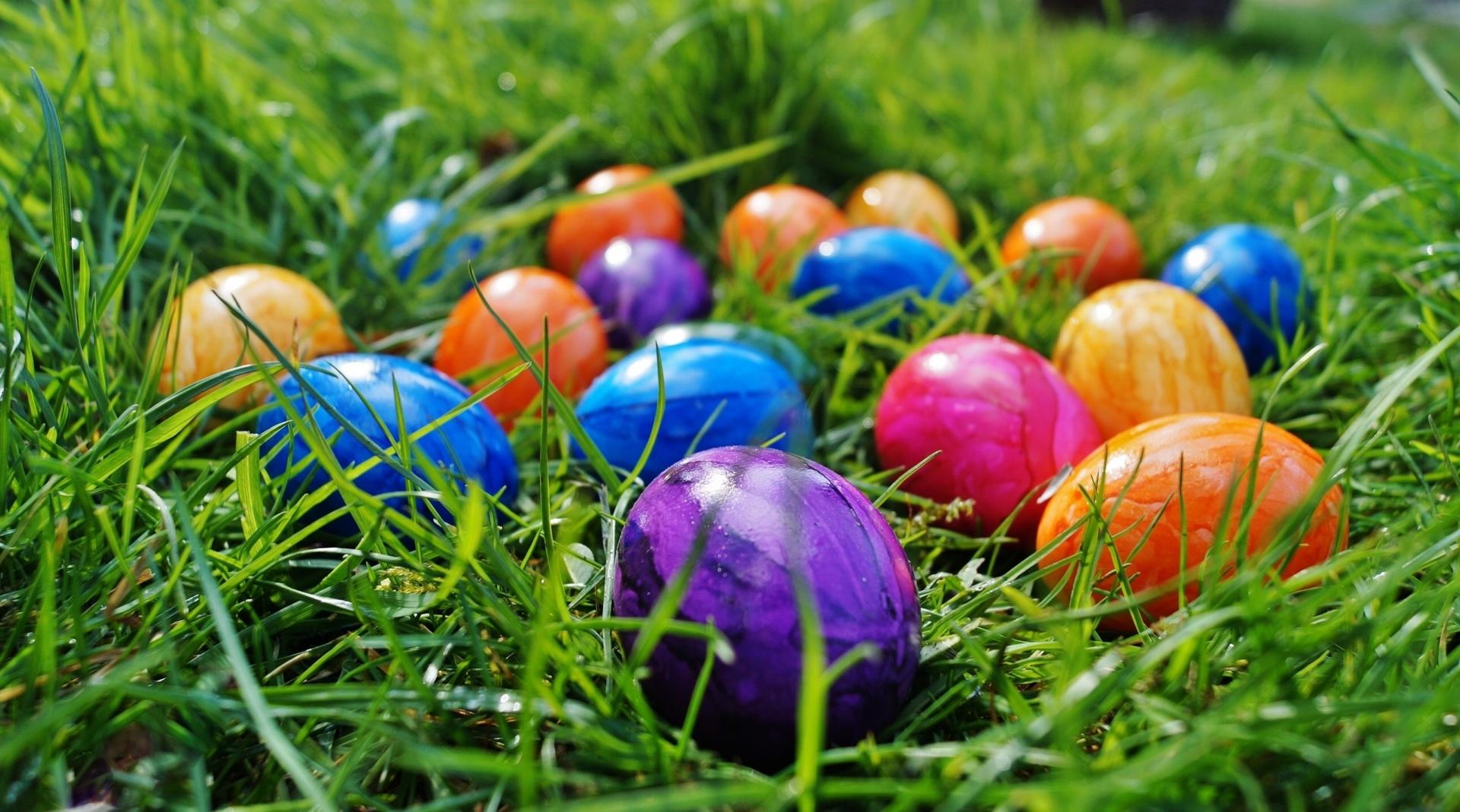 Ostern und das Ei: Wie viele Eier sind tatsächlich noch gesund?